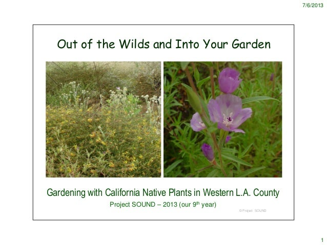 7/6/2013 1 © Project SOUND Out of the Wilds and Into Your Garden Gardening with California Native Plants in Western L.A. C...