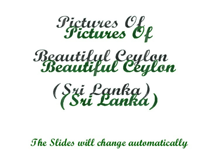 Pictures Of Beautiful Ceylon (Sri Lanka) The Slides will change automatically
