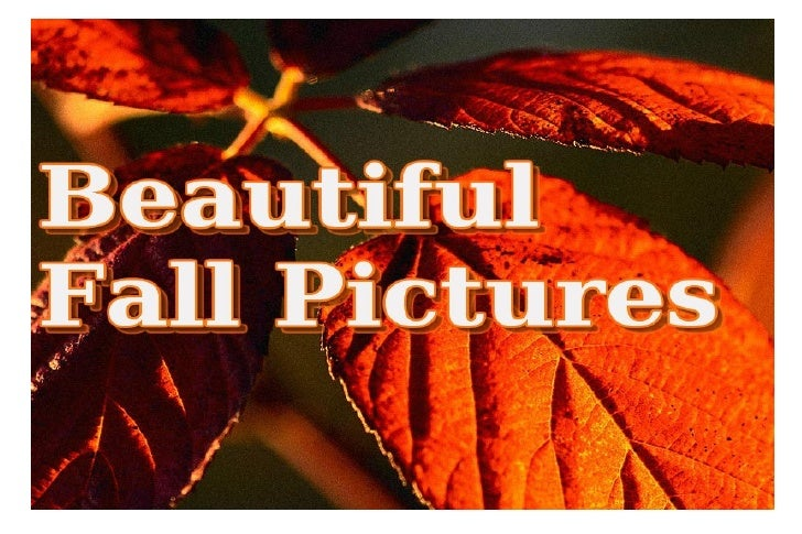Beautiful Fall Pictures Collection