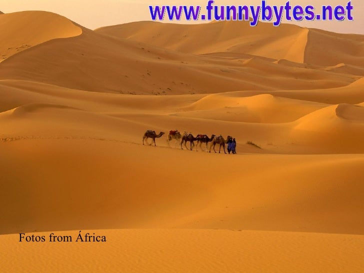 Beautiful Fotos From Africa