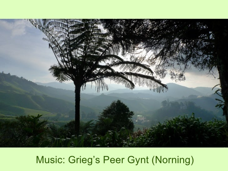 Music: Grieg's Peer Gynt (Norning)