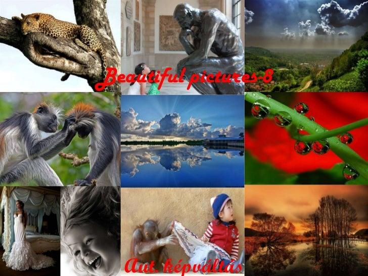 Beautiful pictures -8 A ut. képváltás