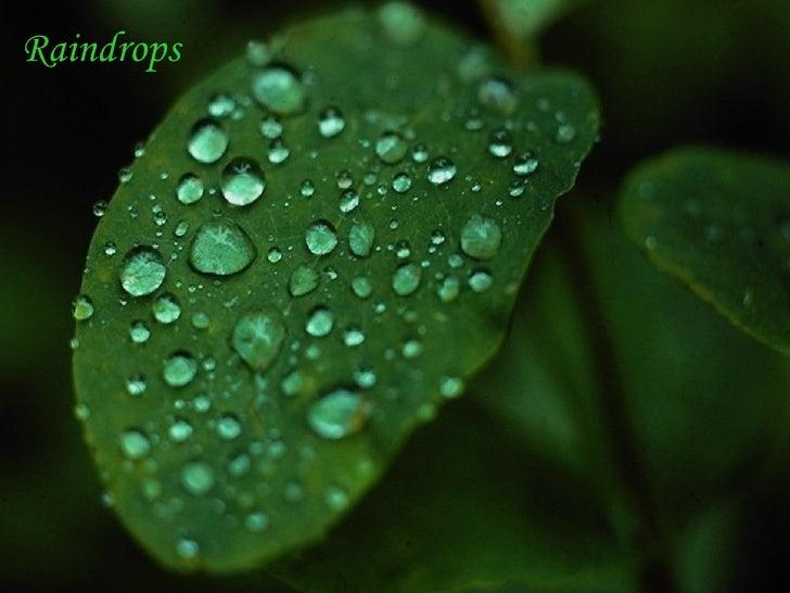 Beautiful Rain Drops(Music)