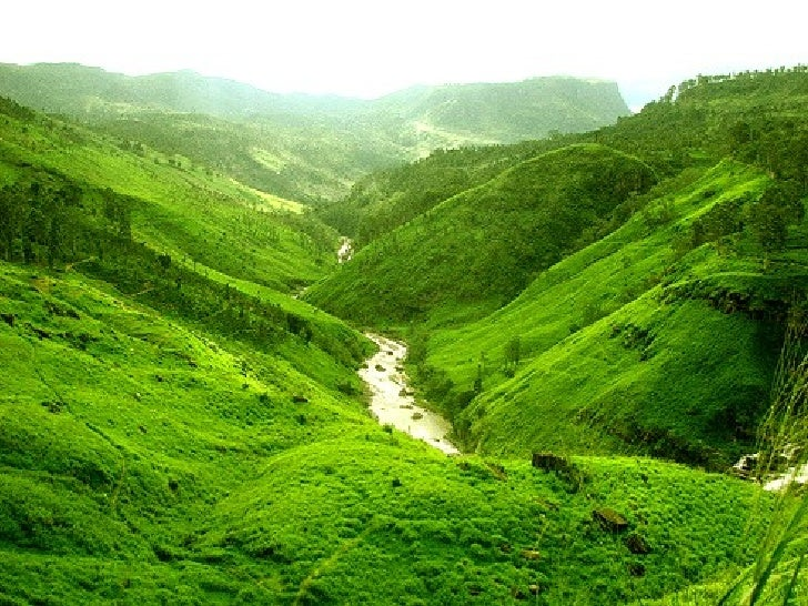 Beautiful Scenery From Sri Lanka