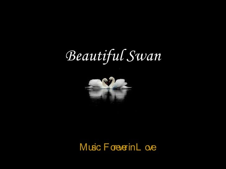 Beautiful Swan 由  tsaidr Music:  Forever in Love