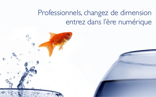 Professionnels, changez de dimension  entrez dans l'ère numérique