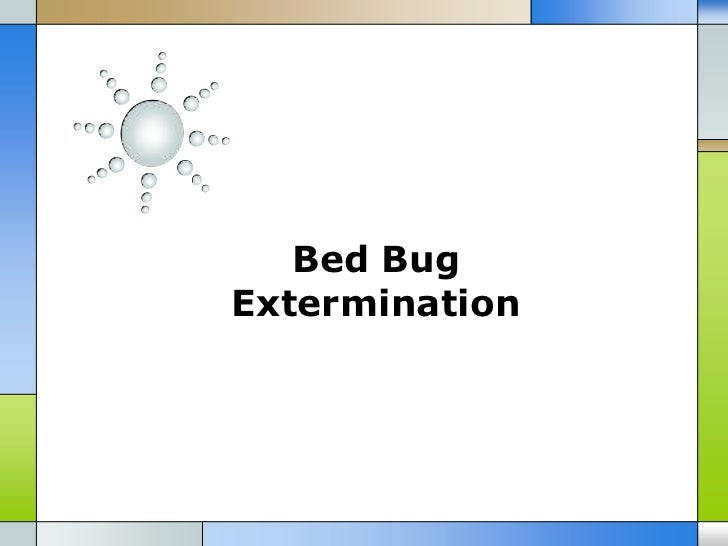 Bed BugExtermination