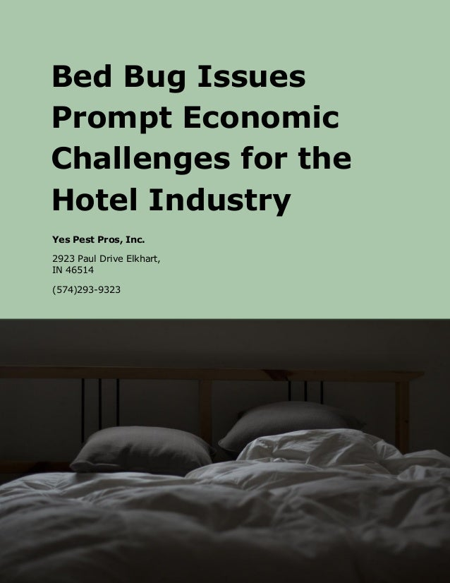 challenge that the hotel industry is This essay explores most of the area in the hospitality industry, this is done by firstly discussing the importance of hospitality businesses for the economy and related businesses then considers the following areas weakness, strength, challenges and opportunities in scotland for hospitality businesses.