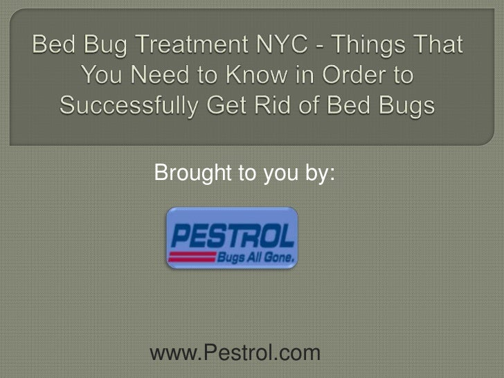 Bed Bug Treatment NYC - Things That You Need to Know in Order to Successfully Get Rid of Bed Bugs