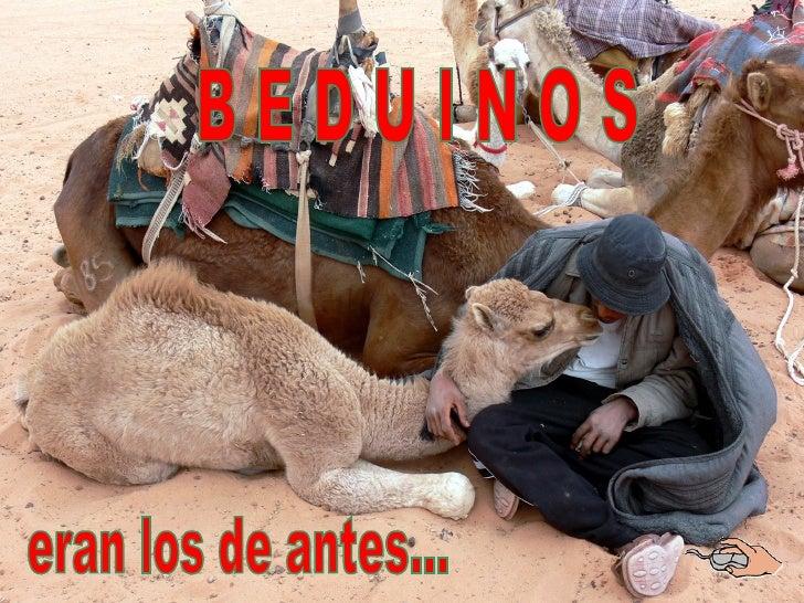 Beduinos... ¡eso era antes!