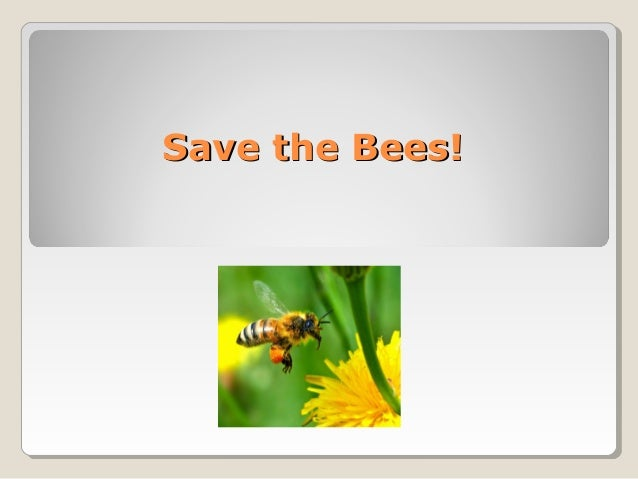 Save the Bees!Save the Bees!