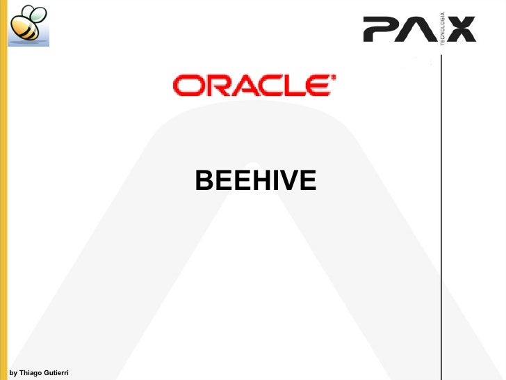 Beehive - Overview