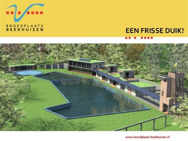 EEN FRISSE DUIK!www.broedplaats-beekhuizen.nl