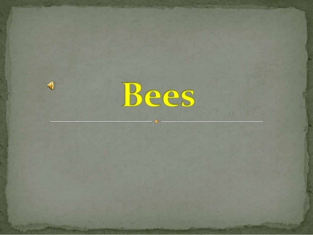  Over the last years, the numbers of bees have been decreasing mainly because of man-made problems. Change in climate and...