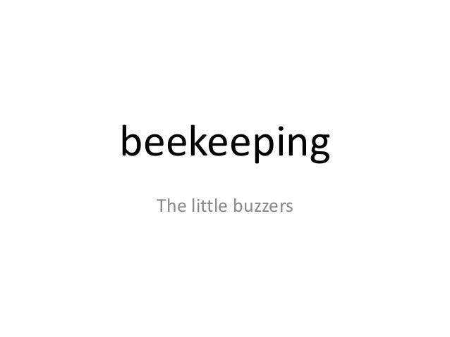 beekeeping The little buzzers