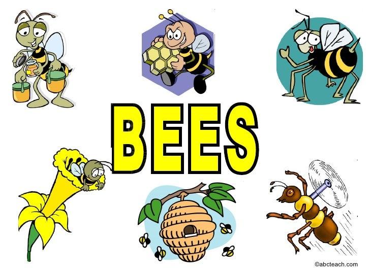 Bees 1 rev
