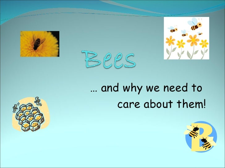 Bees powerpoint1
