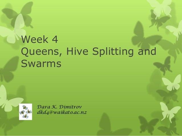 Week 4 Queens, Hive Splitting and Swarms  Dara K. Dimitrov dkd4@waikato.ac.nz