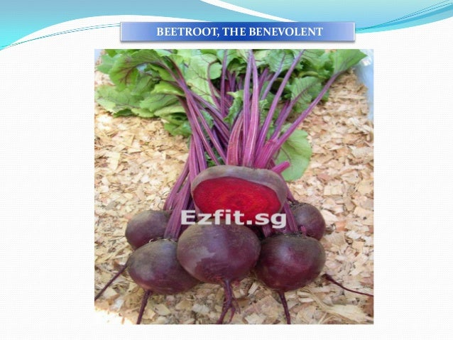 BEETROOT, THE BENEVOLENT