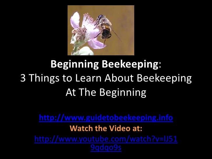 Beginning Beekeeping: 3 Things to Learn About Beekeeping At The Beginning<br />http://www.guidetobeekeeping.info<br />Watc...