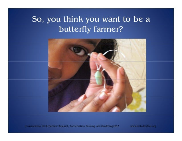So, you think you want to be a butterfly f f farmer?  (c) Association for Butterflies; Research, Conservation, Farming, an...