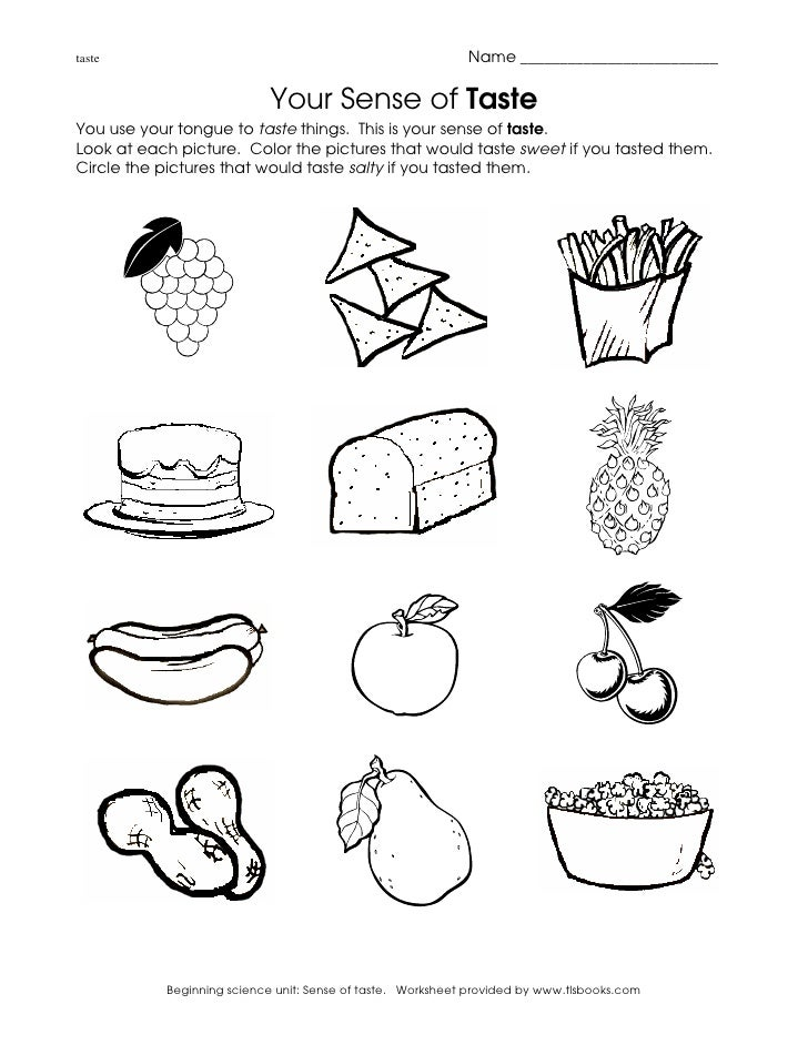 Sense Of Taste For Kids Worksheet Sense Of Taste For Kids Worksheet