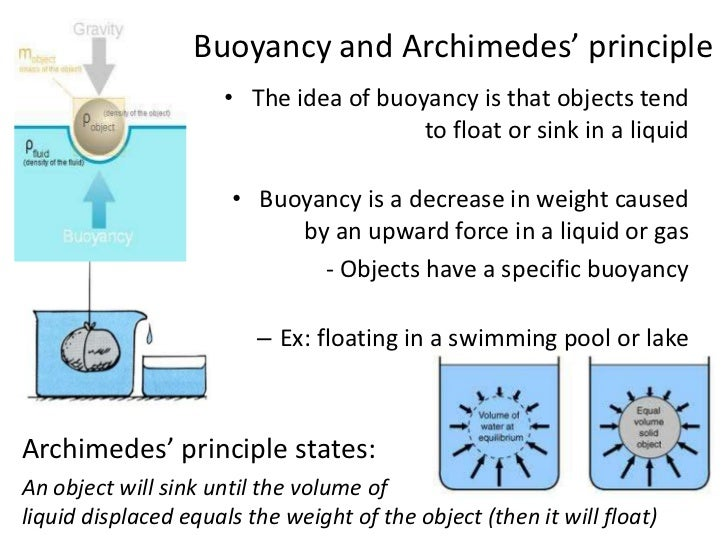 archimedes and the principle of buoyancy essay Free archimedes papers, essays, and research papers  miniature hot air  balloons and archimedes's principle of buoyancy - the history of hot air  balloons.