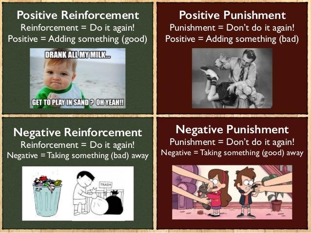essays on discipline and punish
