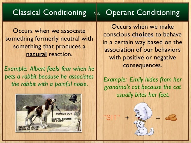 classical conditioning and operant conditioning theories This page continues explaining the theories of operant and classical conditioning, and explains how they can be applied for animal training.