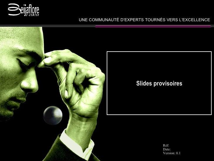 Slides provisoires UNE COMMUNAUT É  D'EXPERTS TOURN É S VERS L'EXCELLENCE Réf: Date:  Version: 0.1