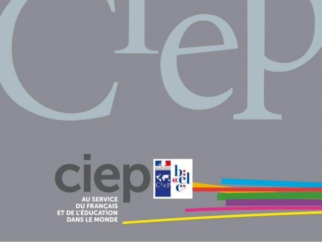 Créer des activités en ligne pour enseigner le FLE BELC Asie du sud - Mai 2015 module B4 Laurent Elisio Bordier
