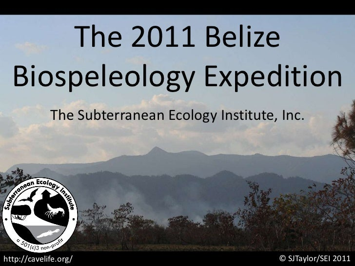 The 2011 Belize <br />Biospeleology Expedition<br />The Subterranean Ecology Institute, Inc.<br />© SJTaylor/SEI 2011<br /...