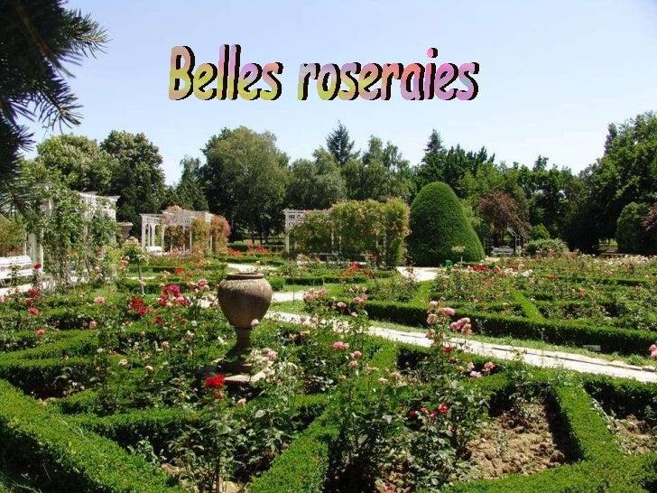 Jardines de  rosales