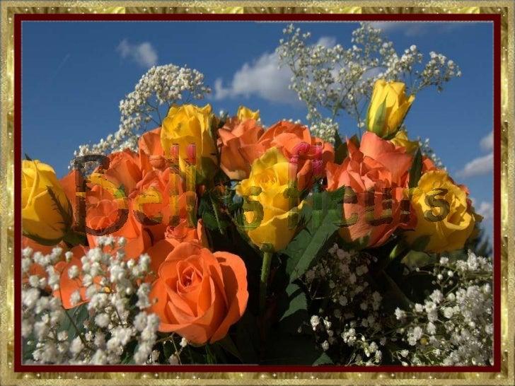 Belles fleurs  ( ildy)