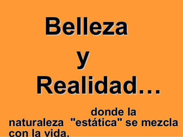 """BellezaBelleza yy Realidad…Realidad… donde ladonde la naturaleza """"estática"""" se mezclanaturaleza """"estática"""" se mezcla"""