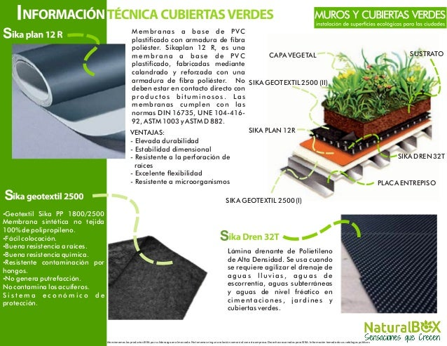 Techos y muros verdes for Muro verde sistema constructivo