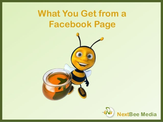 What You Get from a Facebook Page NextBee Media