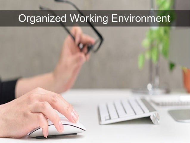 Organized Working Environment