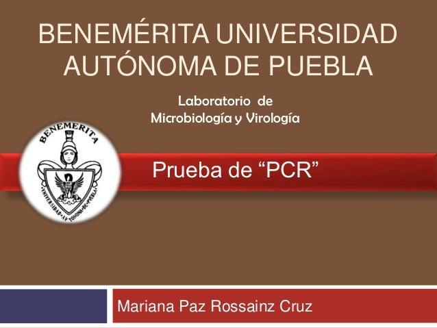 """BENEMÉRITA UNIVERSIDAD AUTÓNOMA DE PUEBLA Laboratorio de Microbiología y Virología  Prueba de """"PCR""""  Mariana Paz Rossainz ..."""