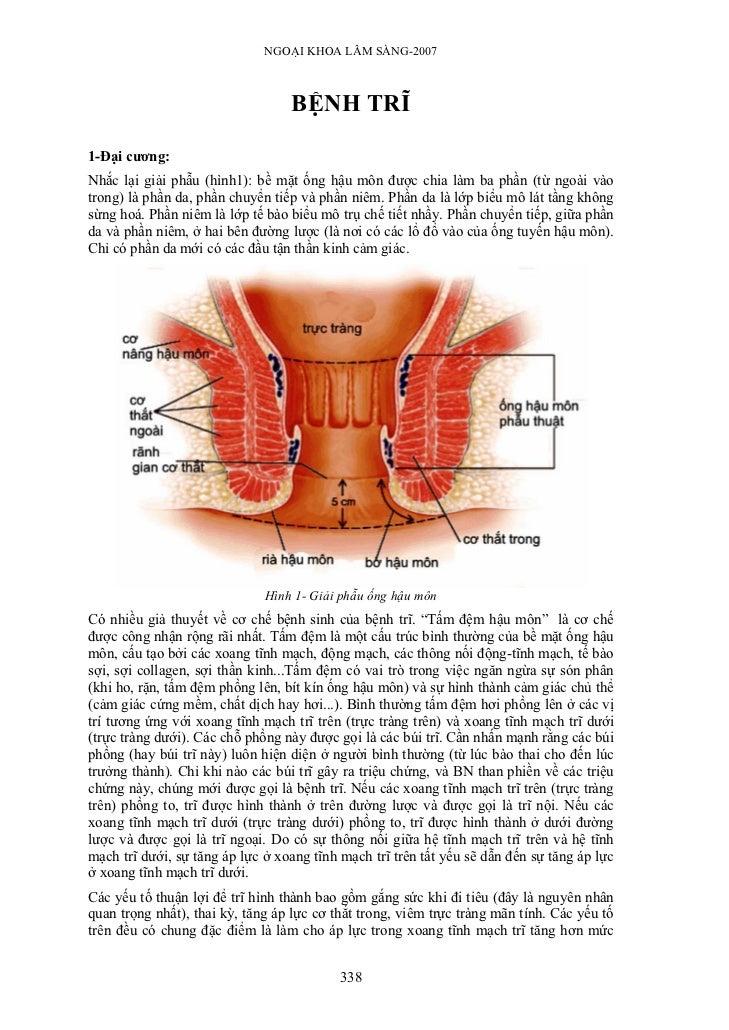 NGOẠI KHOA LÂM SÀNG-2007                                  BỆNH TRĨ1-Đại cương:Nhắc lại giải phẫu (hình1): bề mặt ống hậu m...