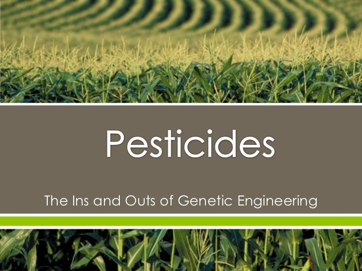      The Ins and Outs of Genetic Engineering