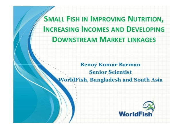 SMALL FISH IN IMPROVING NUTRITION, INCREASING INCOMES AND DEVELOPING DOWNSTREAM MARKET LINKAGES Benoy Kumar Barman Senior ...