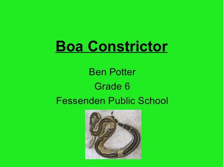Ben potter ben's project