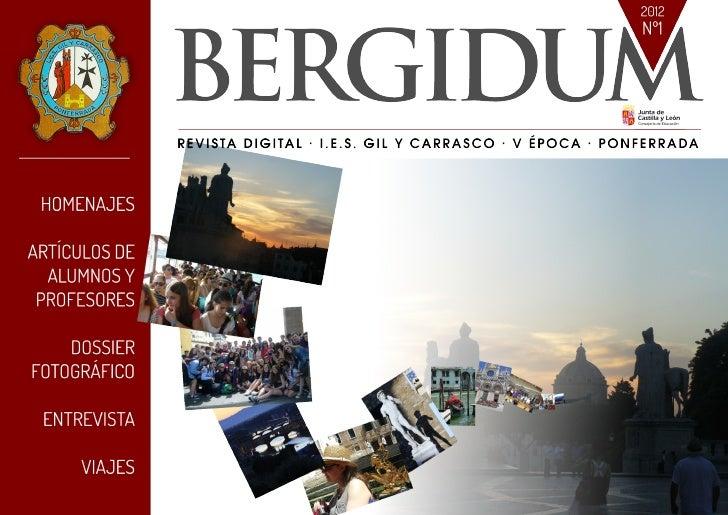 Bergidum 2012 (Revista Digital)