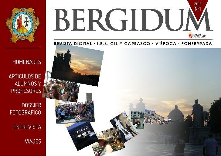 Bergidum digital 2012