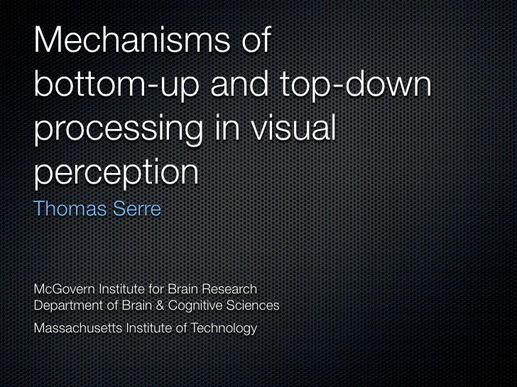 Mechanisms of bottom-up and top-down processing in visual perception Thomas Serre   McGovern Institute for Brain Research ...
