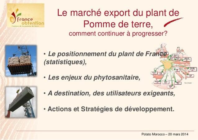 Potato Morocco – 20 mars 2014 Le marché export du plant de Pomme de terre, comment continuer à progresser? • Le positionne...