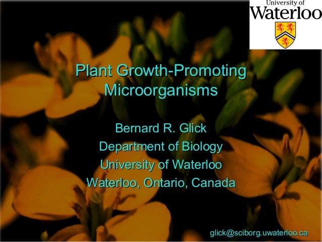 Plant Growth-PromotingPlant Growth-Promoting MicroorganismsMicroorganisms Bernard R. GlickBernard R. Glick Department of B...