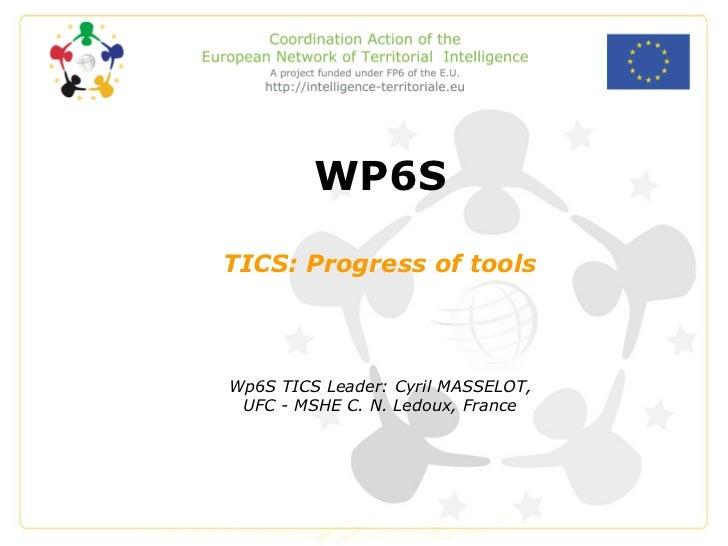 WP6S TICS: Progress of tools Wp6S TICS Leader: Cyril MASSELOT, UFC - MSHE C. N. Ledoux, France
