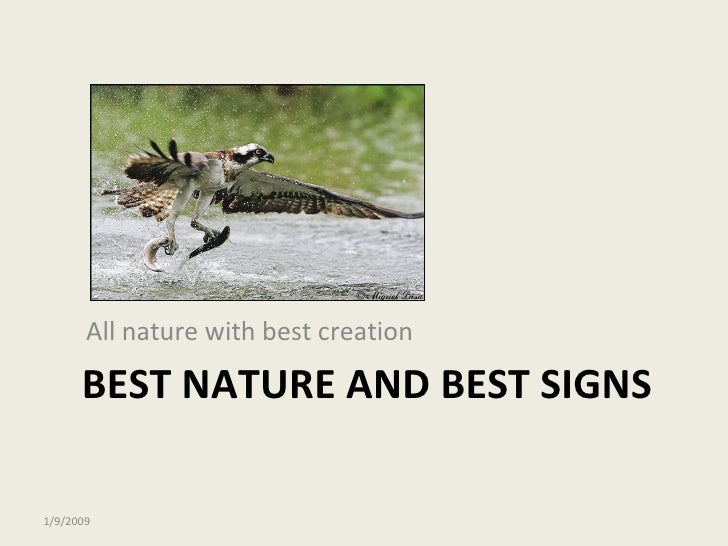BEST NATURE AND BEST SIGNS <ul><li>All nature with best creation </li></ul>1/9/2009